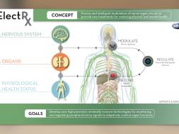 DARPA-self-healing