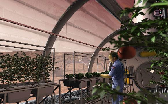 Pela primeira vez cientistas conseguem cultivar plantas em solos quase idênticos aos de Marte e da Lua