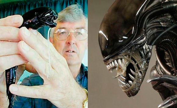 "Cientistas capturam ""Peixe-Alienígena"" nas profundezas submarinas"