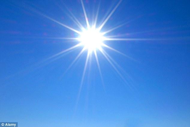 Estudo sugere que vitamina D pode inibir o crescimento do tumor da próstata