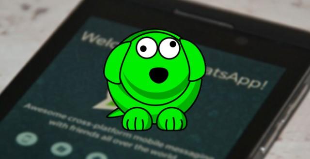 WhatsDog: App que descobre quando contatos do WhatsApp ficam online