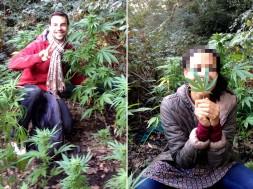 Oscar Lerin, casal encontra plantação secreta de maconha ao sair para caçar cogumelos no mato