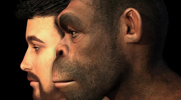Espécie humana desconhecida teria habitado na China, revela estudo