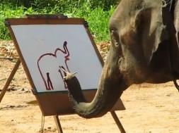 elefante-pintora1