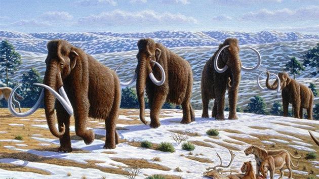 Pesquisadores revelam a dieta peculiar do 'Homo sapiens' há 30.000 anos