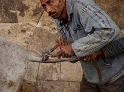 mideast-egypt-donkey-_fran1