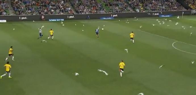 Gaivotas são destaque em jogo da Liga Australiana de futebol