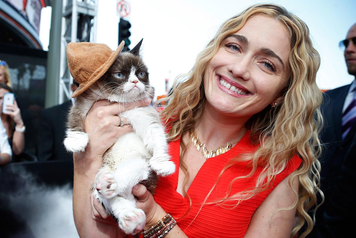 """Gato """"aborrecido"""", fatura 100 milhões de dólares para sua dona"""
