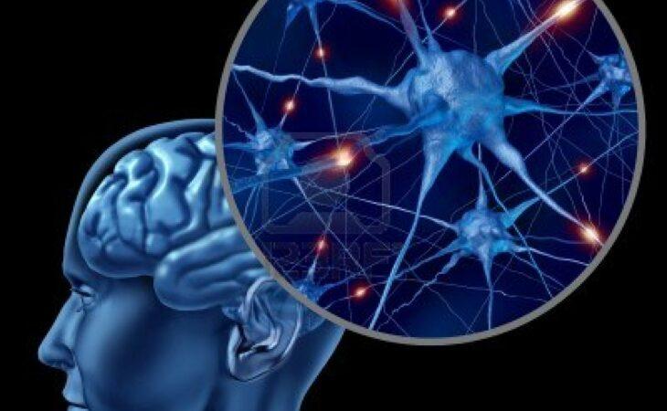 Tarefas complicadas trazem benefícios para memória, informa pesquisa