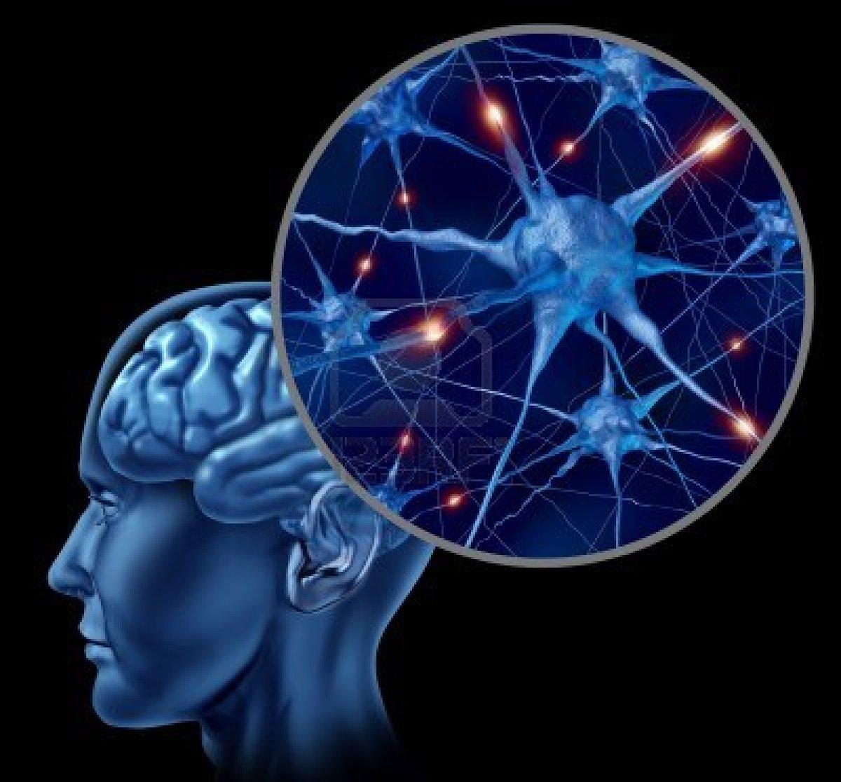 Tarefas-complicadas-trazem-benefícios-para-memória-informa-pesquisa..
