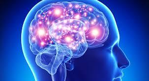 O cérebro humano apaga memórias inúteis para manter-se ordenado, revela estudo