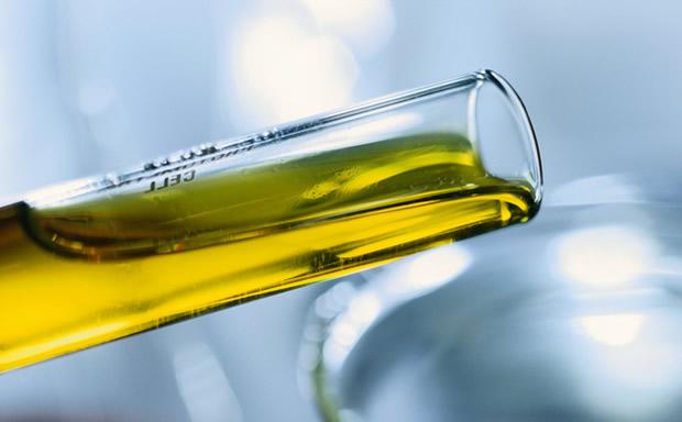 RN estreita parceria com a Petrobras para aumento da produção de biocombustíveis