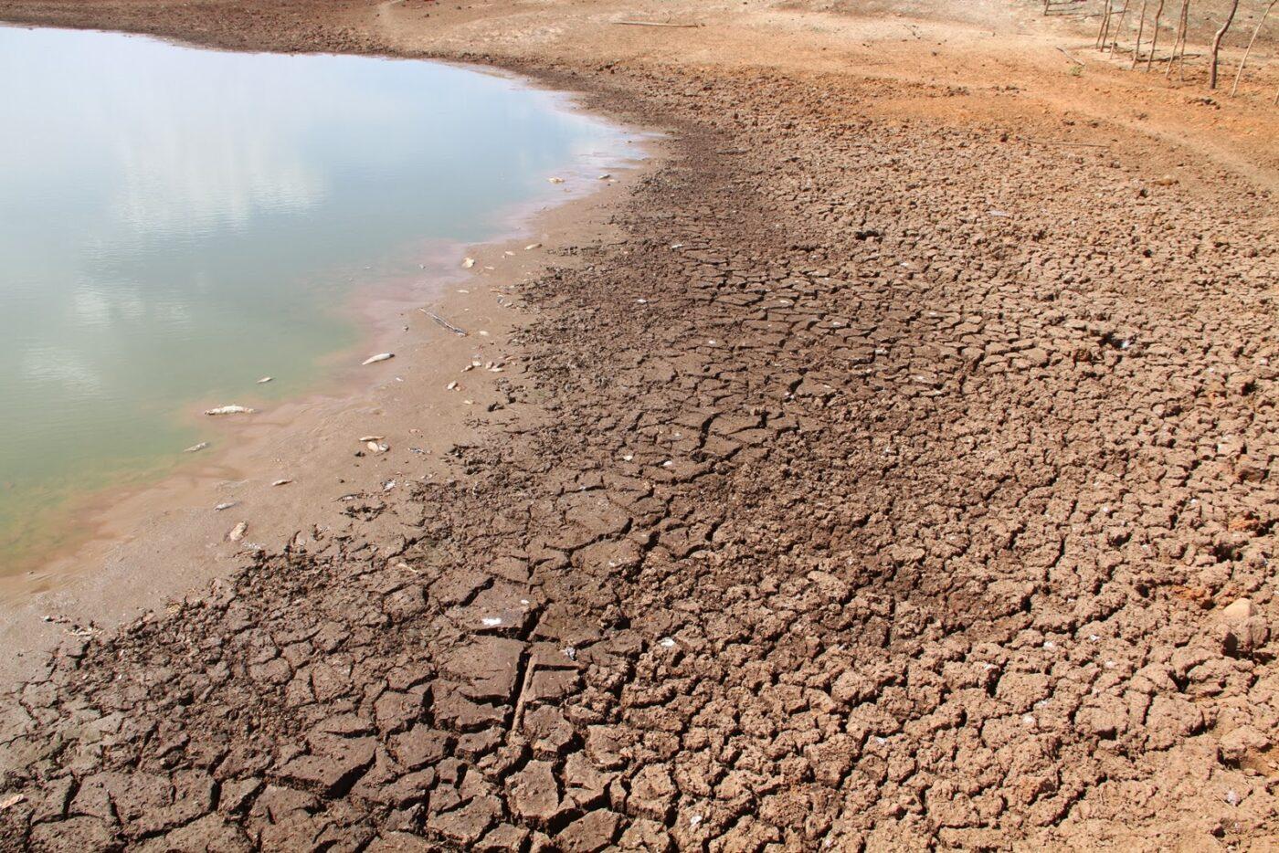 Devido a seca, 147 municípios do RN estão em situação de emergência