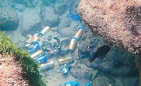 Após Carnaval, mergulhadores retiram mais de 700 kg de lixo do mar em Salvador