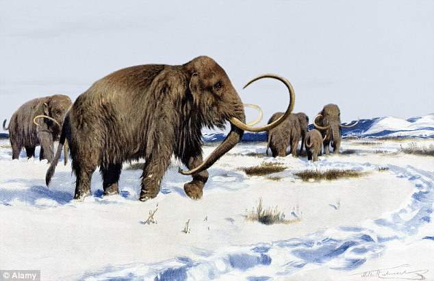 Cientistas estão a um passo de recriar os mamutes