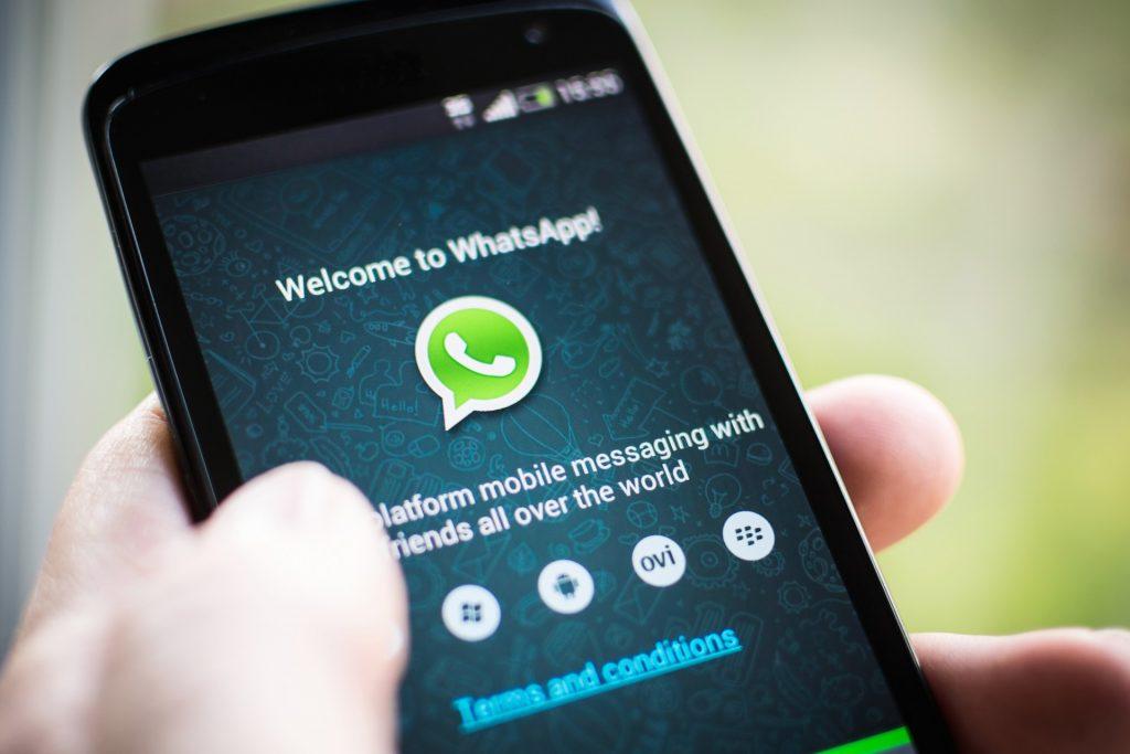 'Aperte no esquilo': saiba o motivo desta mensagem travar seu WhatsApp