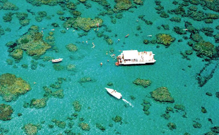 Conheça as cinco melhores piscinas naturais do país