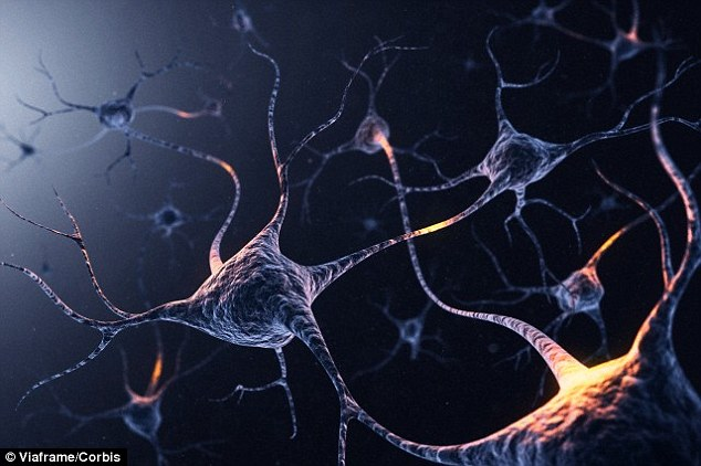 O segredo dos sonâmbulos! 'sistema GPS' do cérebro ainda funciona quando estamos dormindo, diz estudo