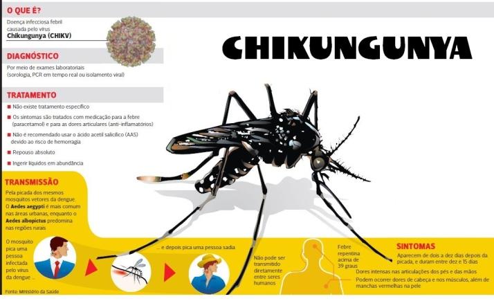 Febre chikungunya tem sintomas que podem se tornar irreversíveis