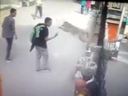 macaco ataca