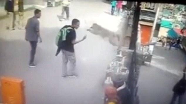 Adolescente é atacado por macaco após mostrar dedo do meio para o animal, confira!