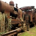 Vista dos trens abandonados da vila de Paranapiacaba, em Santo André (foto: Eduardo Vessoni)