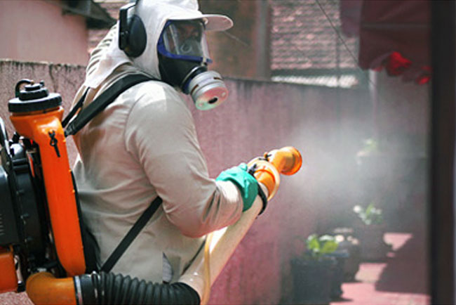 SMS intensifica ações de combate e prevenção à dengue e descarta casos de Chikungunya em Natal