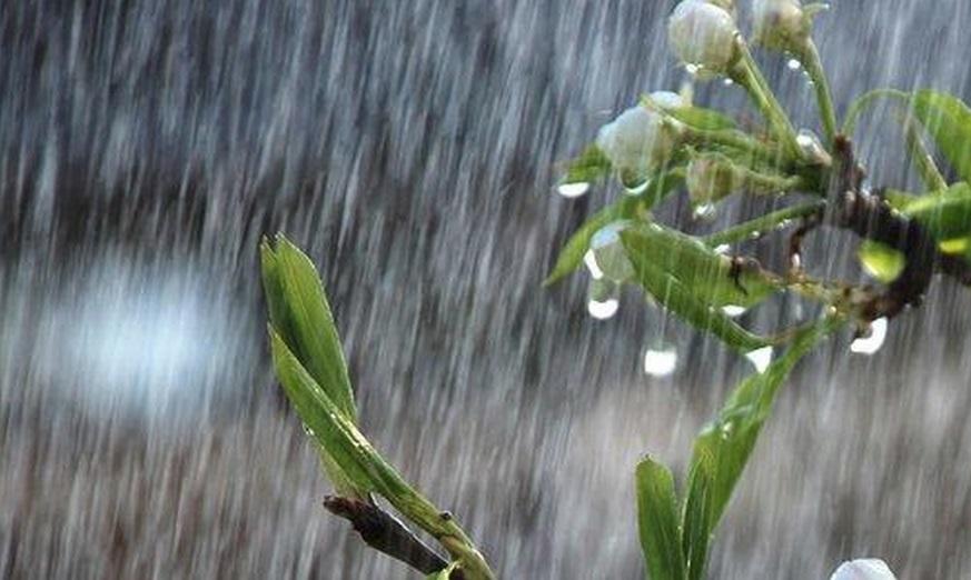Mais chuvas são registradas pela EMPARN em todo o RN