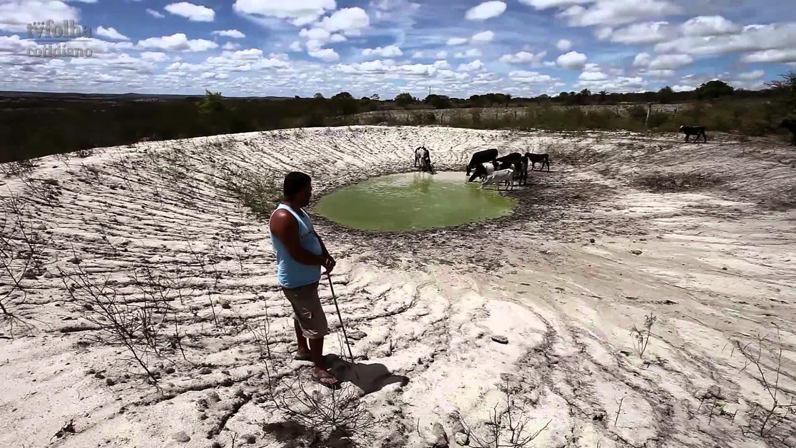 Assembleia Legislativa propõe mobilização regional contra a seca