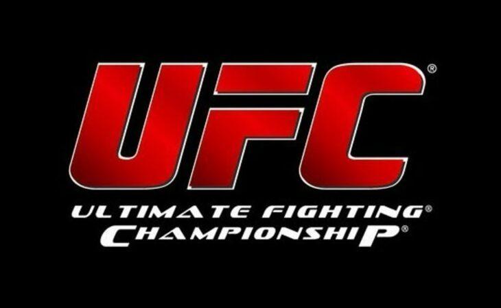 Rankings UFC: Spider cai duas posições e Weidman sobe no peso-por-peso