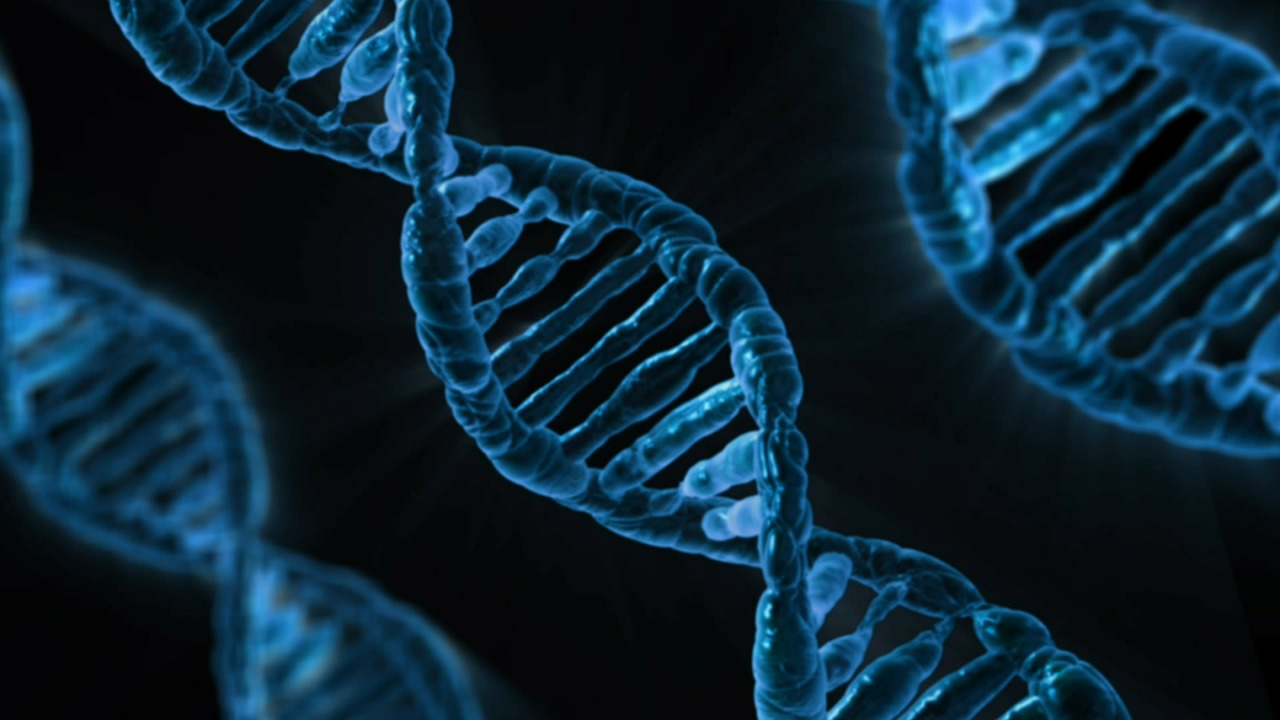Mundo terá 'Google do DNA' em 10 anos, diz estudo