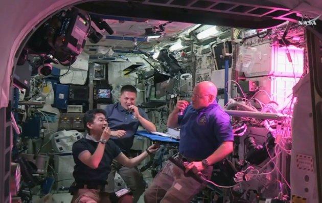 Astronautas da ISS comem 1ª verdura cultivada no espaço