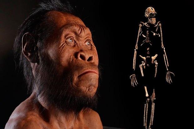 Homo Naledi: Cientistas anunciam descoberta de novo gênero humano