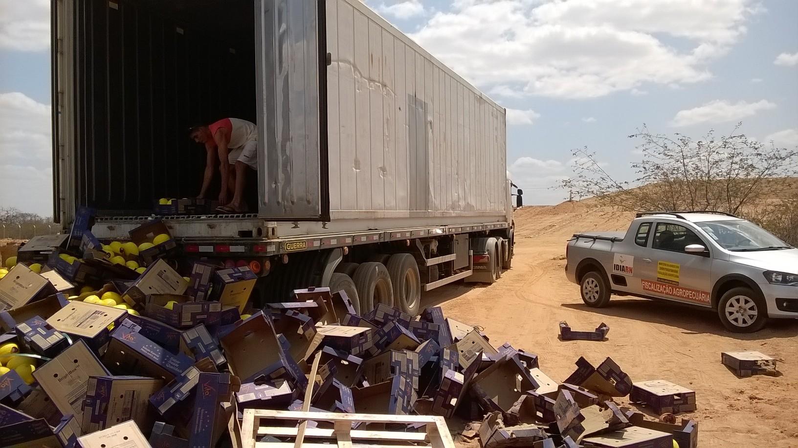 22 toneladas de melão são apreendidas em Mossoró