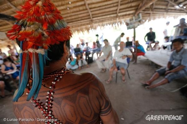 Greenpeace tenta impedir criação de usina no Pará