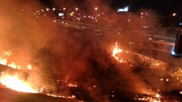 Bombeiros combatem incêndio em terreno às margens da BR 101 em Natal