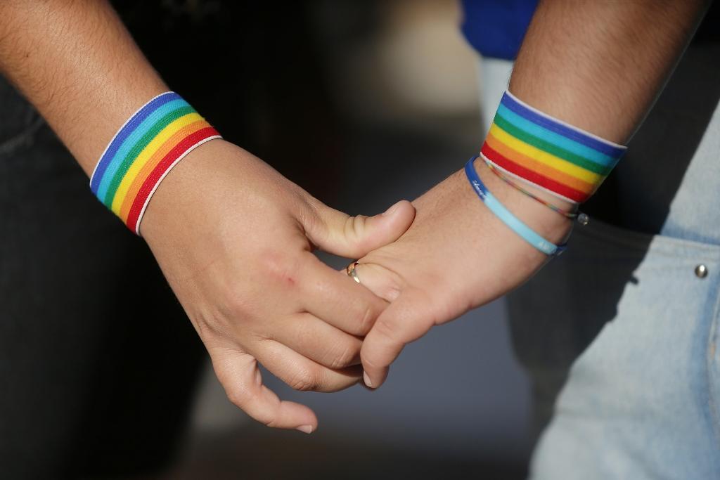 RN teve 47 casamentos entre pessoas do mesmo sexo em 2014, aponta IBGE