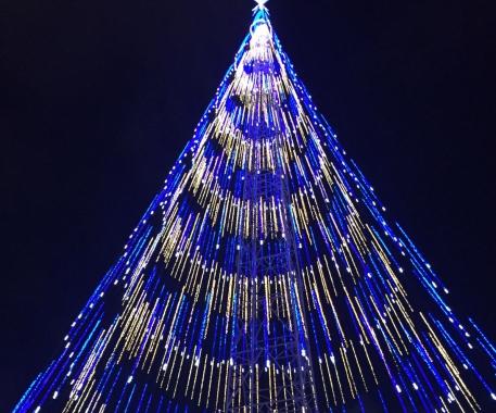 Árvore de Mirassol vai receber 20 shows de artistas potiguares em dezembro