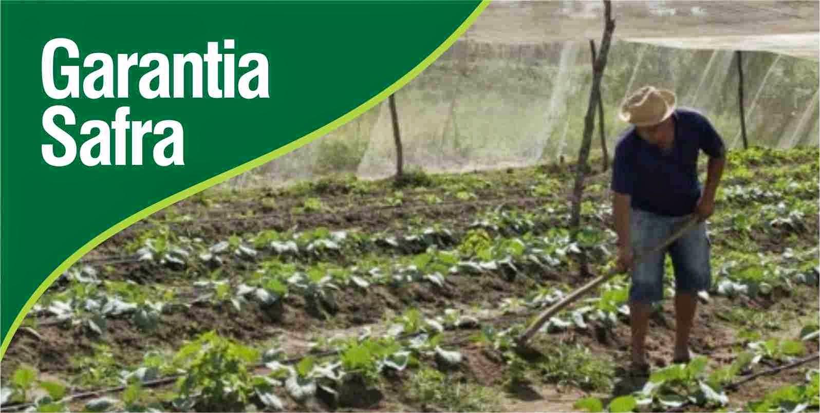 Pagamento do Garantia Safra injetará R$ 18,6 milhões na economia de 62 municípios potiguares