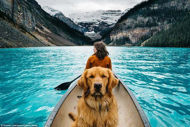 Cachorro faz sucesso no Instagram em fotos com paisagens incríveis