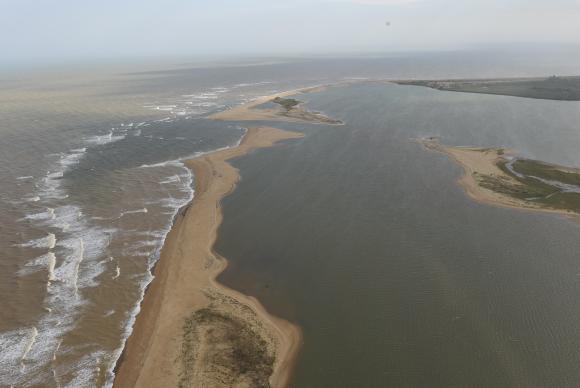 Lama ultrapassa barreira e atinge vegetação na foz do Rio Doce