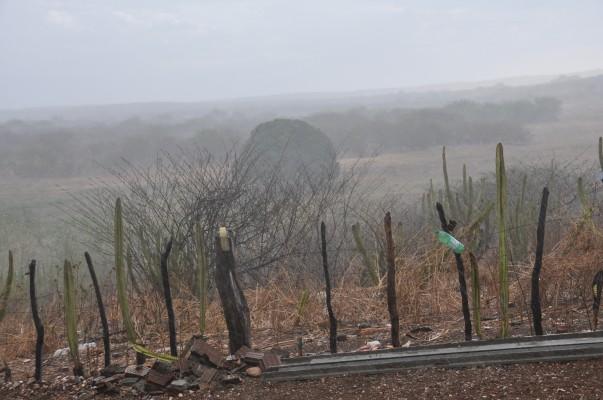Chuvas são registradas em 46 municípios durante feriadão de Natal