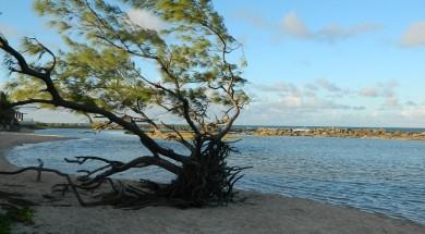 Praia de Camurupim – Abril 2012 (1)