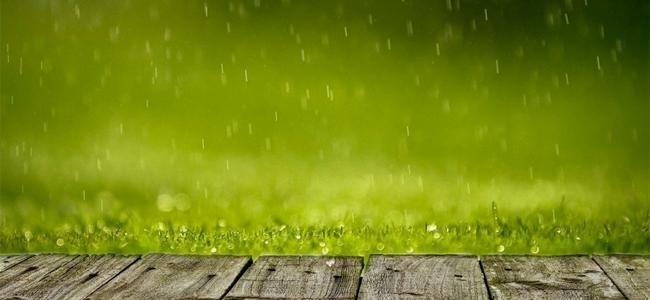 Emparn registra chuvas em 83 postos pluviométricos do Estado