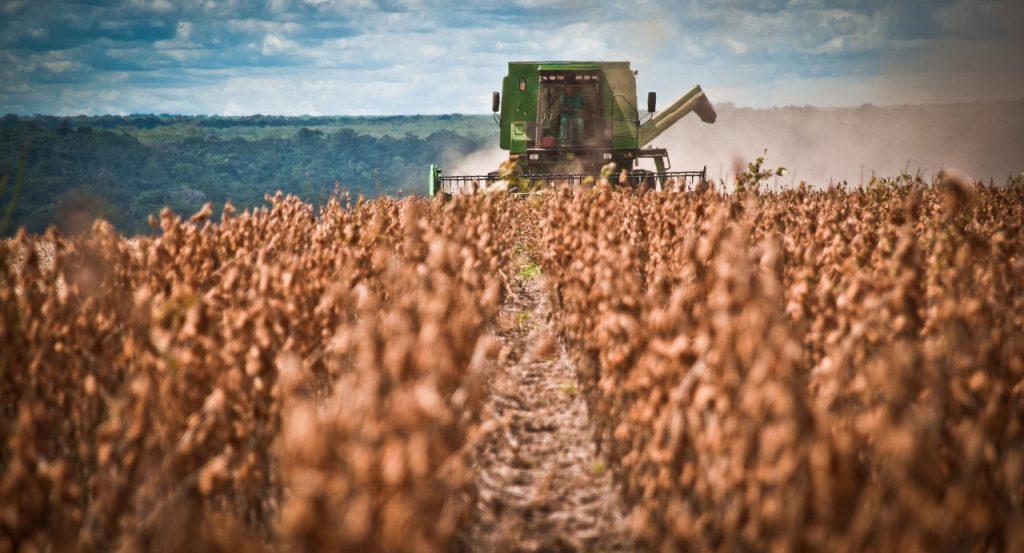 Soja, milho e arroz representam mais de 90% da safra 2017