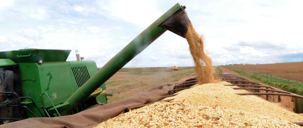 Safra de grãos do RN deve dobrar em 2016, diz Conab