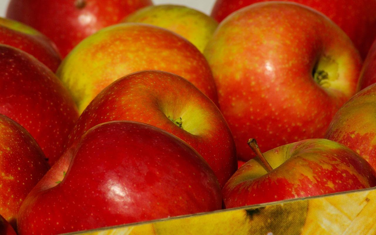Além de retardar o envelhecimento, maçã ajuda no combate ao câncer