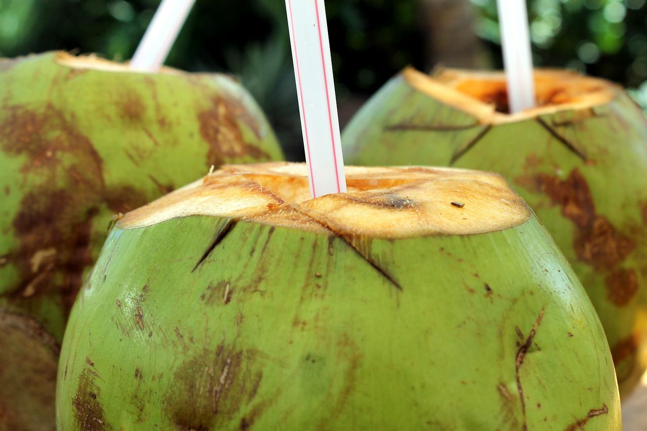 Saiba os benefícios da água de coco para a saúde