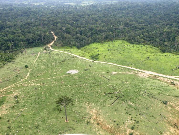 Satélites italianos monitorarão desmatamento da Amazônia