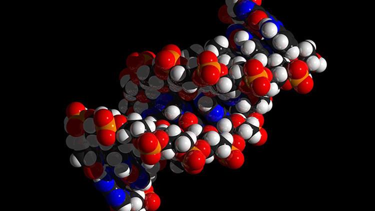 Cientistas descobrem como armazenar imagens digitais no DNA